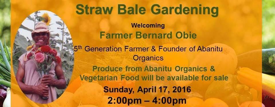 Straw Bale Gardening Demo