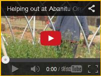 Abanitu Organics Video